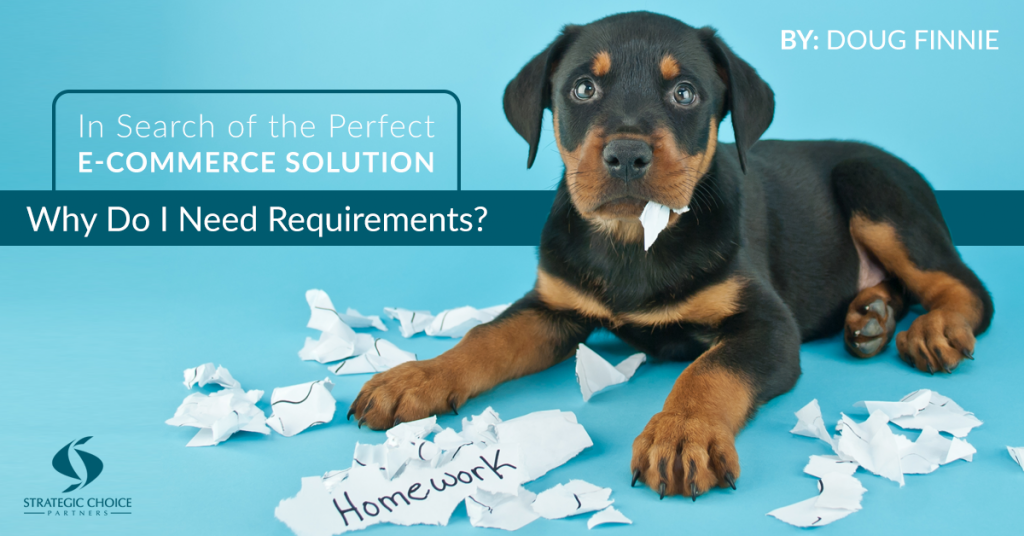 Why Do I Need Requirements?