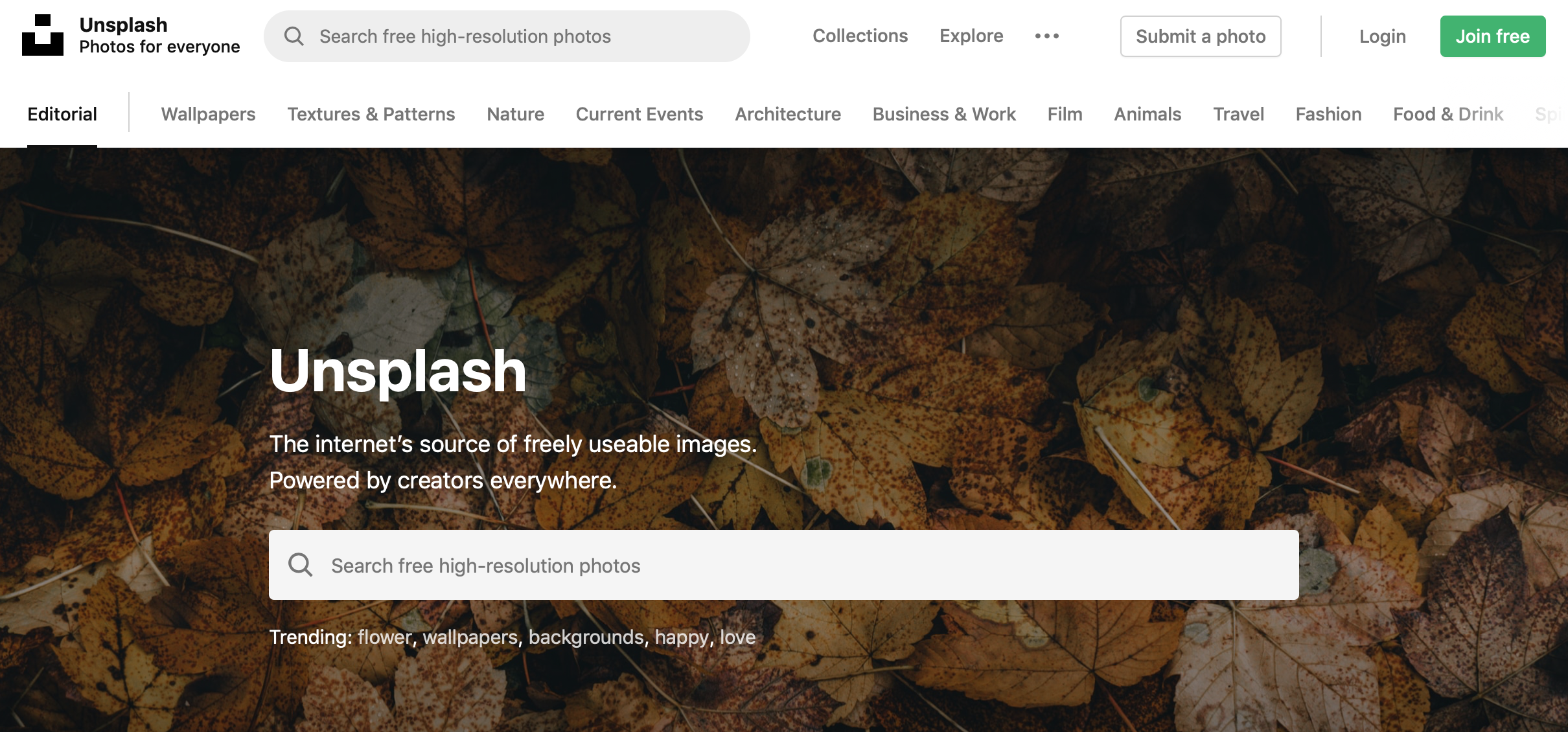 Tip 9: Use Unsplash for Free Pictures